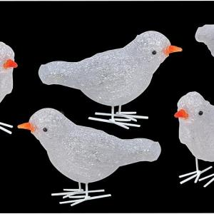 16cm 5 Piece Acrylic Birds with 30 White LEDs