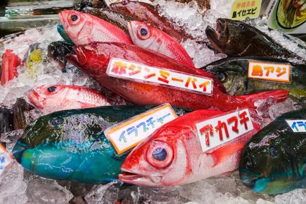 Fresh fish for sale at the Makishi Public Market.
