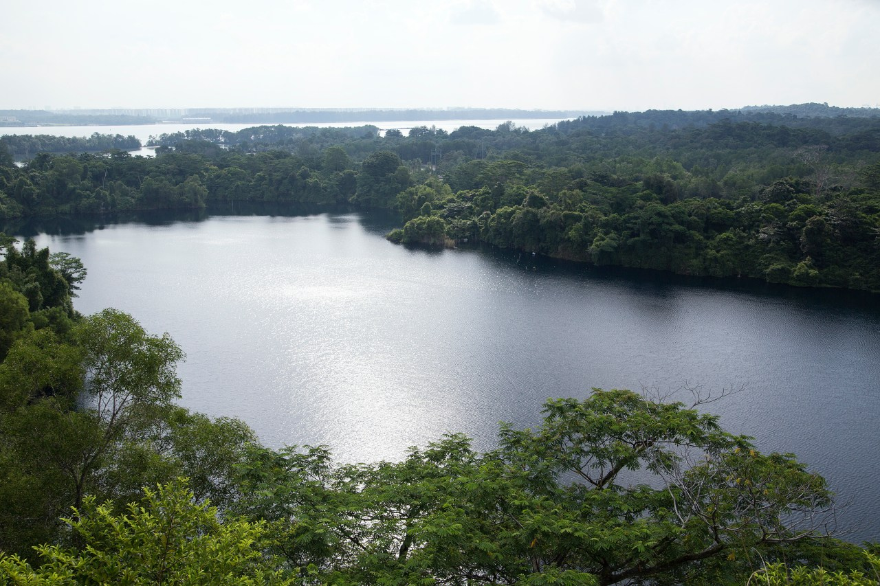 The viewpoint on top of Puaka Hill, the highest point of Pulau Ubin.