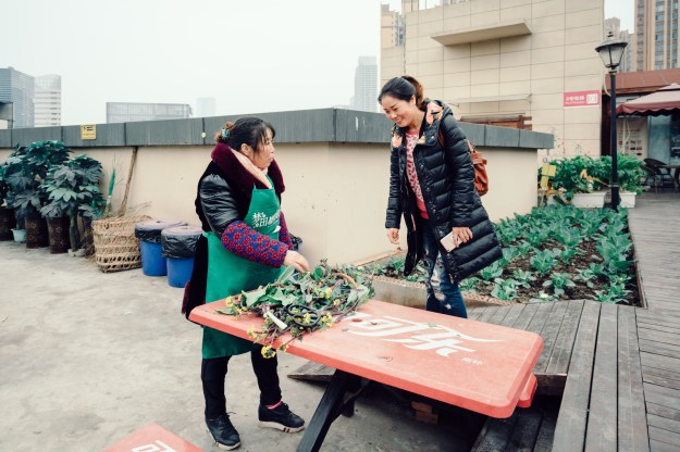 Photo 1: Ms. Wong, 60, talking with a customer in central Chengdu. Photo 2: People visiting Sky Farm.