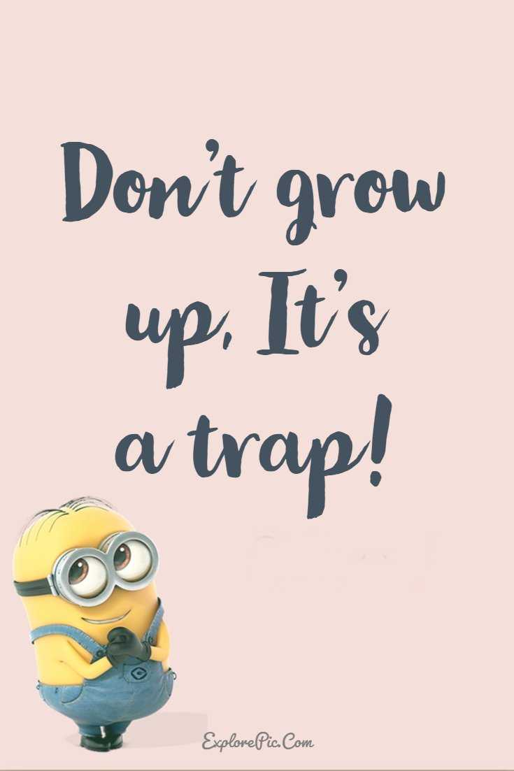 Minions Quotes 37 Funny Quotes Minions And Funny Words To Say 1