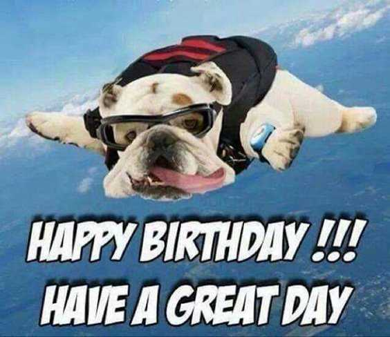 32 Best Funny Birthday Pictures Funny Birthday Quotes 24