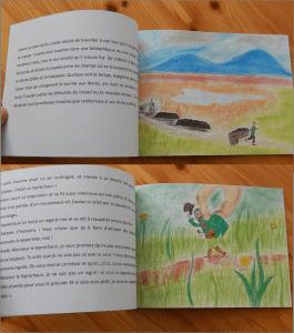 album pour enfants leprechaun légende irlande