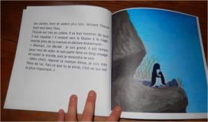 livre pingouins pole nord animaux de la mer océan