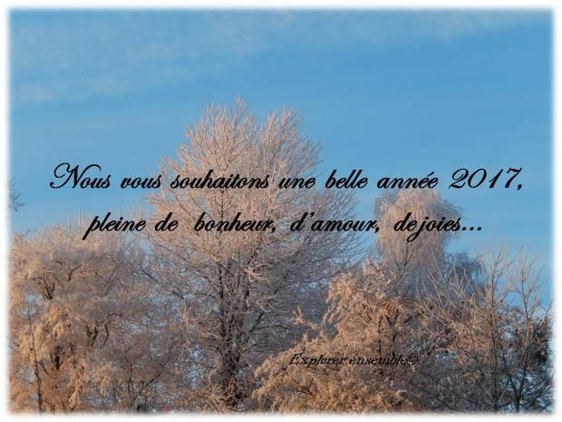 bonne-annee-2017