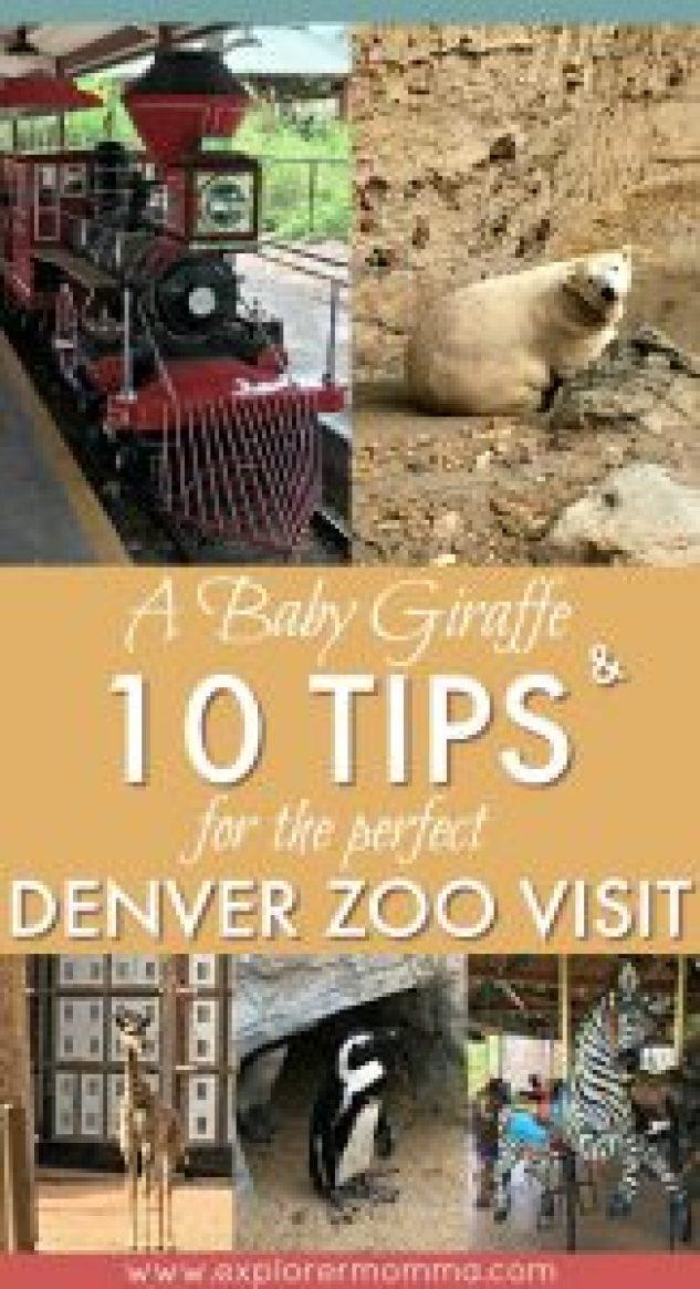 Denver Zoo pin
