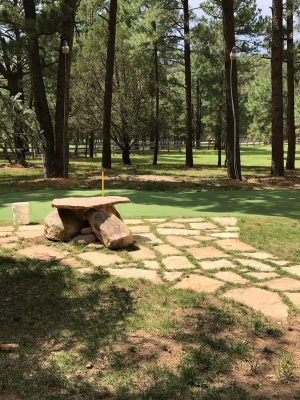 Things to do in Ruidoso, New Mexico cabin yard