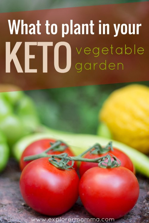 Keto vegetable garden pin, tomatoes