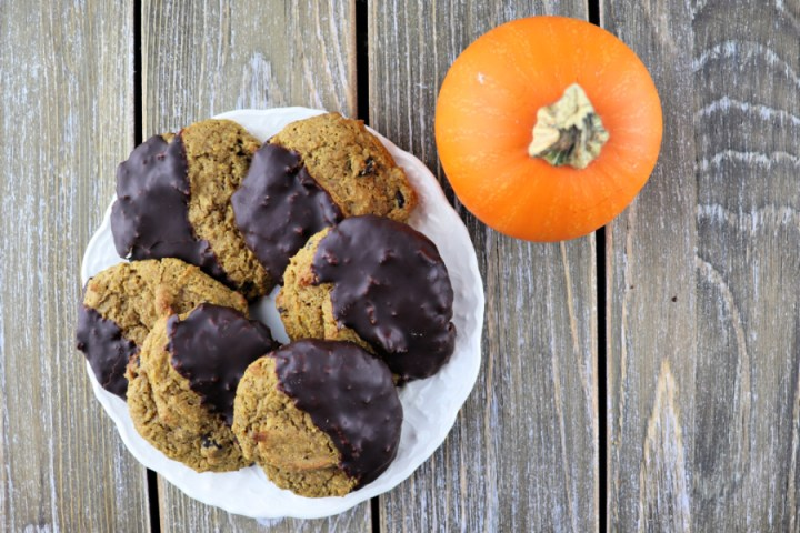 Keto pumpkin cookies are low carb, gluten-free, sugar-free and fabulous! Pumpkin spice and chocolate combine to perfection! #pumpkin #ketocookies