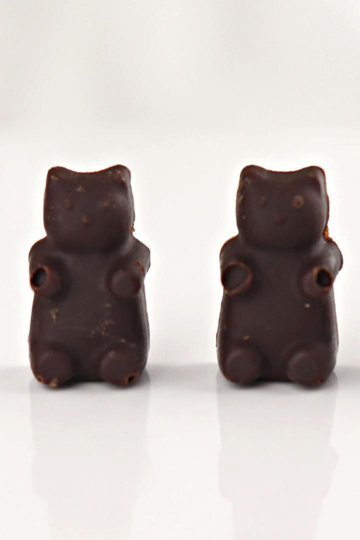 Two keto chocolate bears #ketochocolate #chocolatecraving #lowcarbchocolate
