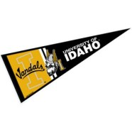 university_of_idaho_pennant_26429sma