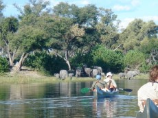 Paddling the Selinda Canoe Trail