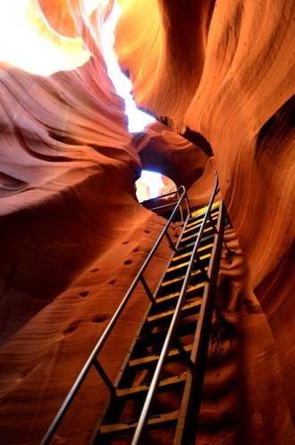 The ladder which took us all the way down. The Lower Antelope Canyon is (if I can recall correctly) about 120 feet/37 m deep.
