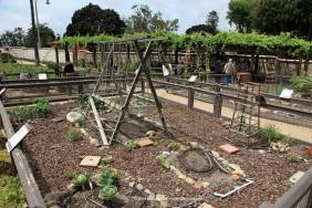 Mission vegetable garden