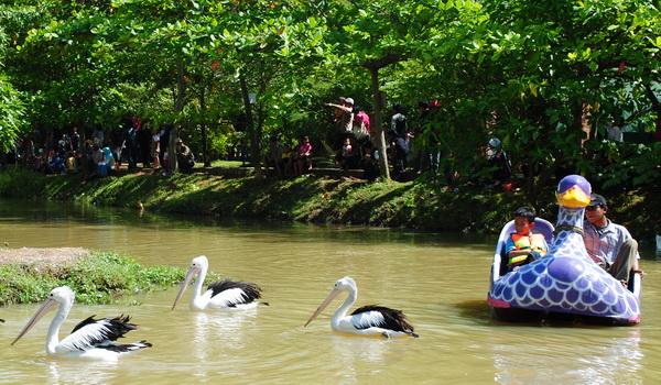 Naik perahu di Kebun Binatang Explore Semarang
