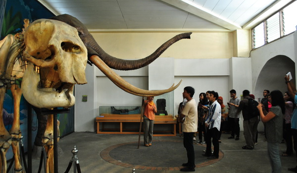 Patung Gajah Purba Museum Ronggowarsito