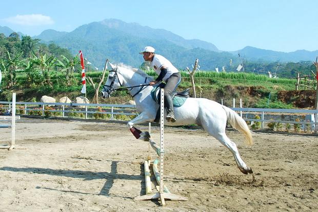 Kuda-sedang-melompat