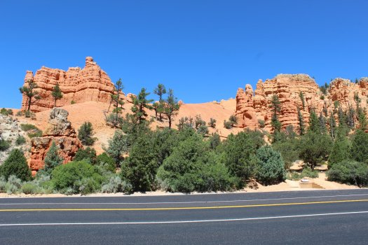 Near the entrance to Dixie National Forest