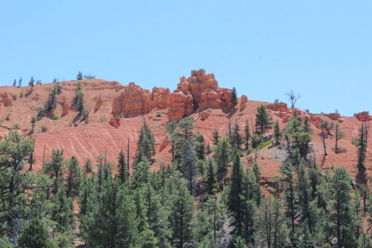 Rock Formation - Dixie National Forest