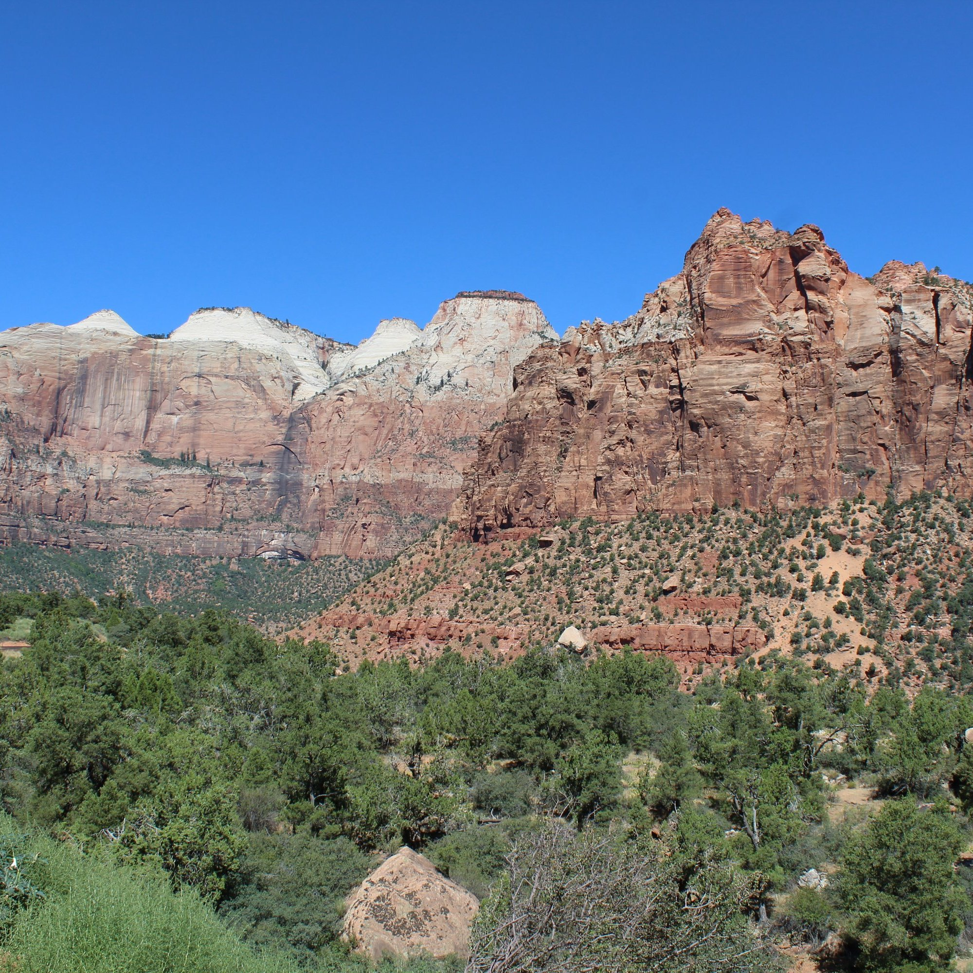 Near the East Temple - Zion National Park