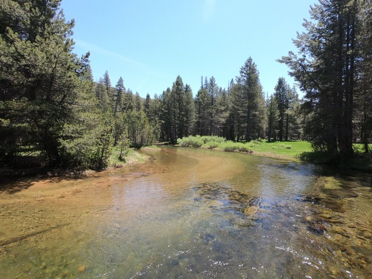Crossing the West Walker River - Hoover Wilderness - 7-6-2019