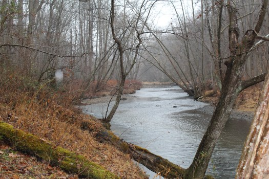Gunpowder Falls near the Mingo Branch
