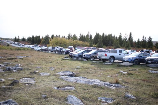 Insane parking at Dolly Sods - 10-9-2020