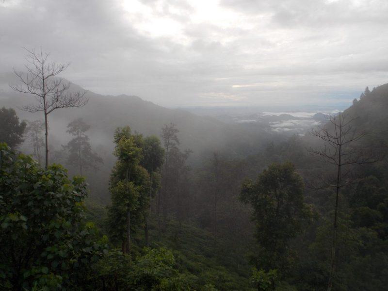 Ella Gap in Mist is a Wonderful Sight