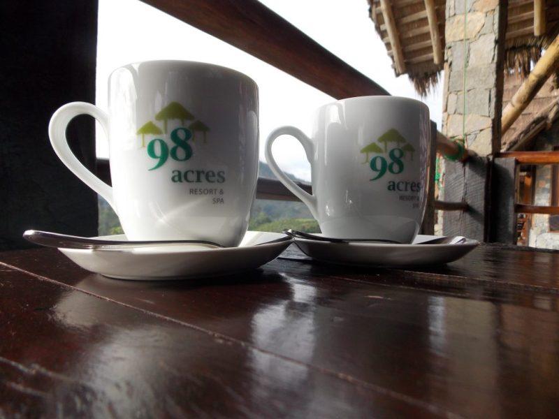 Having tea facing ella gap
