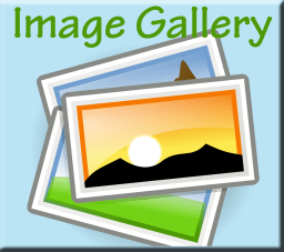 Image Gallery Banner