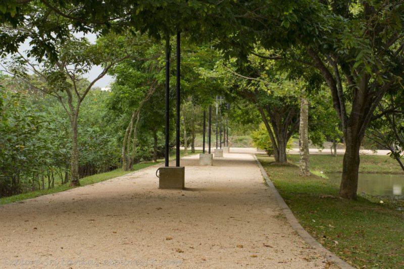 Urban Wetland Park Nugegoda