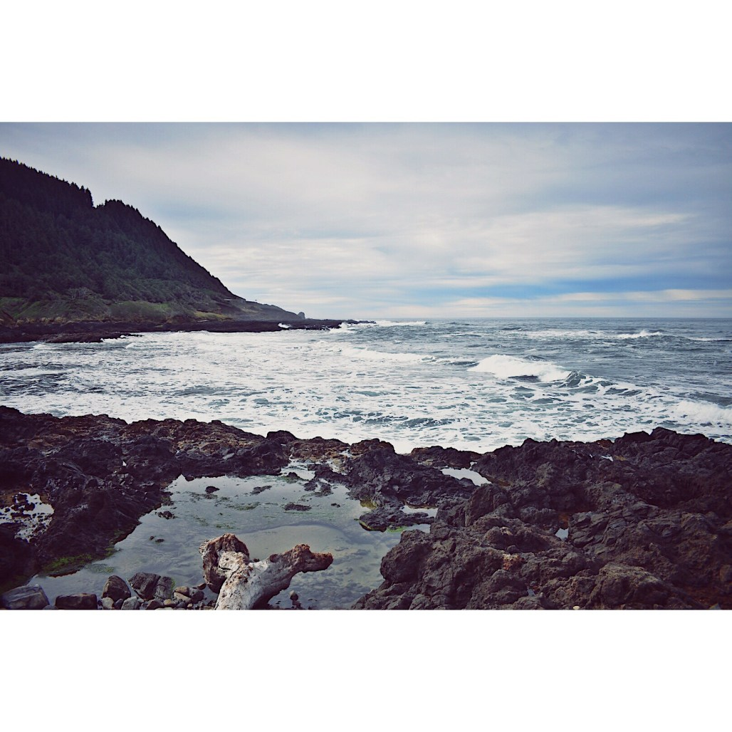 Cape Perpetua Tide Pools