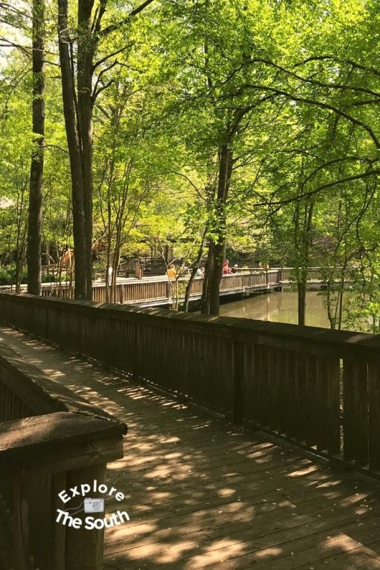 Bridge at Dauset Trails surrounded by water and woods
