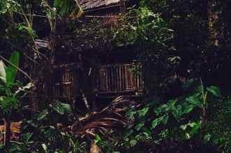 Philippine Mountain People