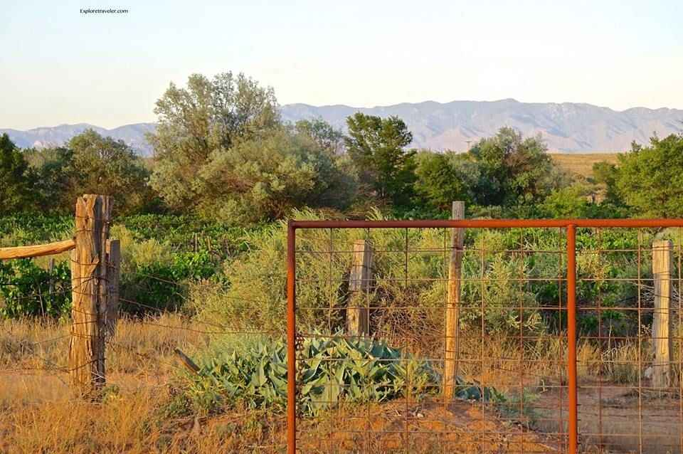 The Treasures Of Southern New Mexico