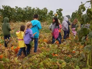 Cloudview Farms Kids