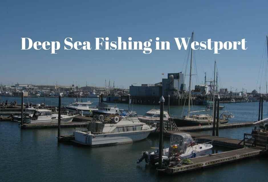 Deep Sea Fishing in Westport