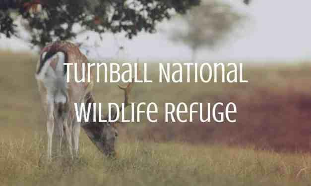 Turnball National Wildlife Refuge
