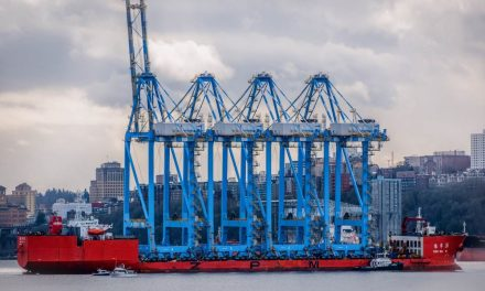 MASSIVE Ship Delivering HUGE Cranes to Tacoma – (Video Footage)