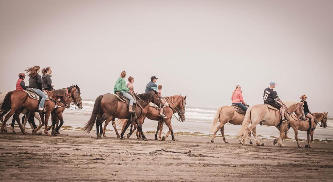 Horses on beach at Ocean Shores Washington