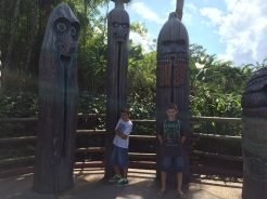 My Boys' First Disney Trip