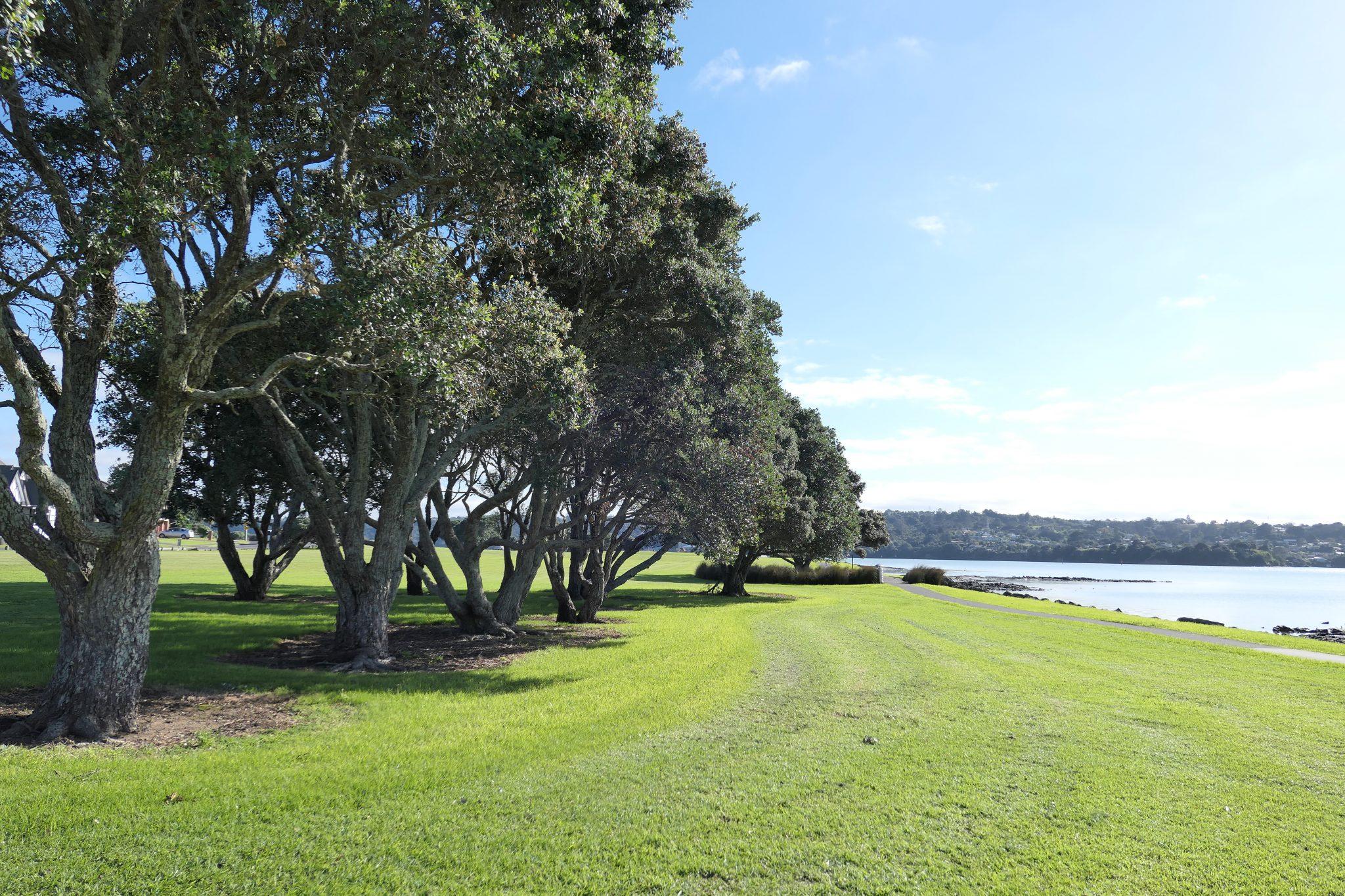 Kiwi Esplanade