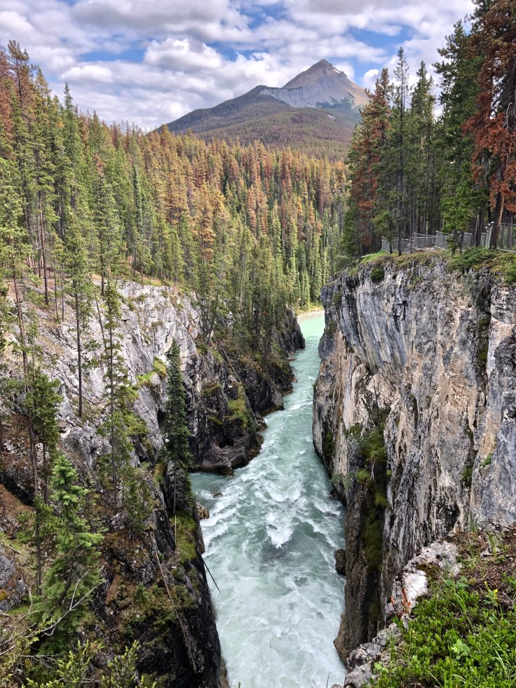 Sunwapta Falls in Jasper National Park