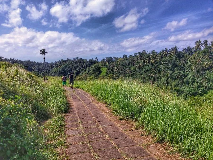 Bali With Kids: Ubud walk