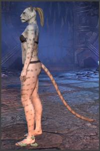 ESO Body Markings of the Khajiit - Position 2
