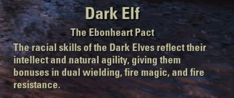 Exploring the Elder Scrolls Online - Dark Elf Description