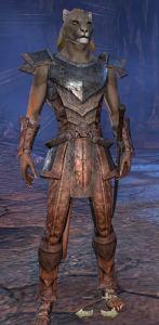 Exploring the Elder Scrolls Online - Male Khajiit