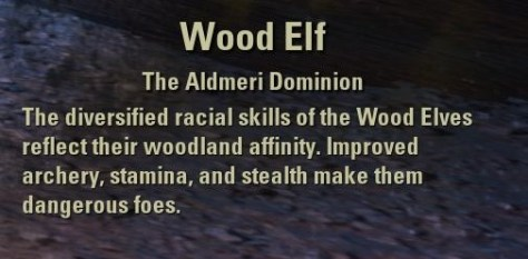 Exploring the Elder Scrolls Online - Wood Elf Description