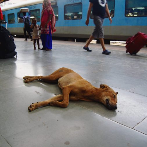 train station india poverty