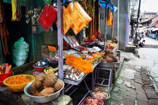 Kathmandu streets day tour Exploring Kiwis Nepal
